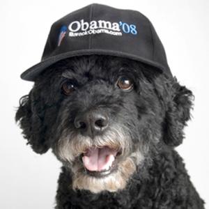 obama-doodle1